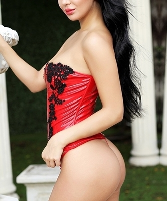 Picture of Red PVC Detailed Zip UP Bustier