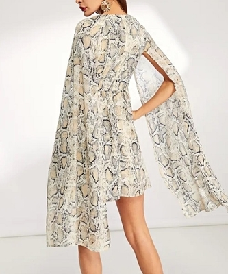 Picture of Snake Print Sheer V-Neck Dress